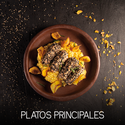 PlatosPrincipales-Web